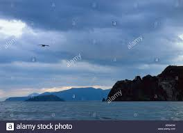 marine landscape in the evening cloudy gray black sky in bluish