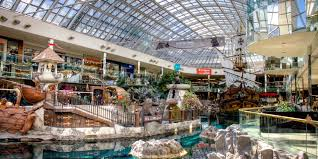 9 reasons why you must visit west edmonton mall from penguins to