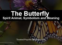 the butterfly spirit a complete guide to meaning and