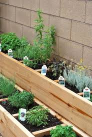herb gardens i love that this herb garden has a separate section for each herb