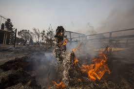 Wildfire California Video by Northern California Wildfires Grow Weather Conditions Worsen