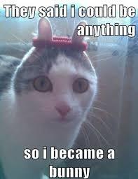 Easter Funny Memes - 25 funny easter memes 4 easter humor funny easter