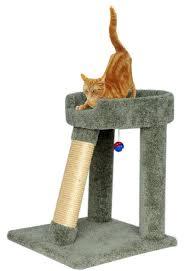 Cat Scratcher Angled Cat Scratching Post And Bed 24 Inch Green Cat Scratcher