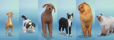 sims 3 boxer dog breeds in the sims 4 cats and dogs sims online