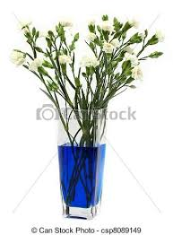 blue carnations blue carnations classic chemistry experiment dying
