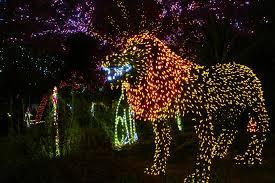 Zoo Lights Phoenix The 25th Annual Phoenix Zoolights U2026 It U0027s Amazing And We Thank You