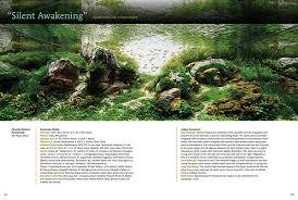 Aquascaping World Planted Aquarium Enthusiasts Welcome To Amazonas Magazine