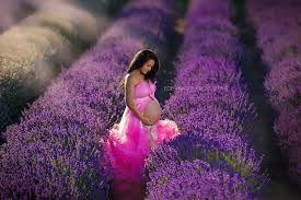 maternity photographers top ten maternity photographers bao