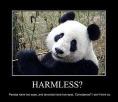 Pick Up Line Panda Meme - pick up line panda memes quickmeme cheesy pick up lines