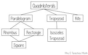 how i teach the quadrilateral family tree mrs e teaches math