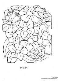 free flower coloring pages for flowers page shimosoku biz
