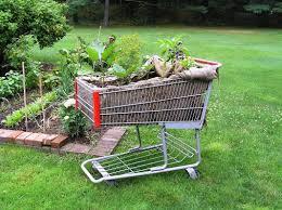 best 20 raised garden beds ideas on pinterest raised beds garden