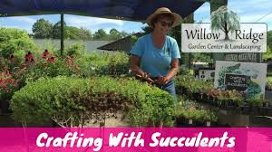 crafting with succulents willow ridge garden center youtube