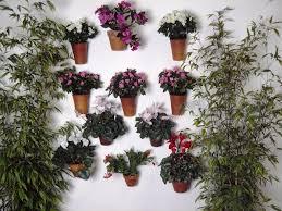hanging wall planters u2014 jen u0026 joes design creative wall hangings