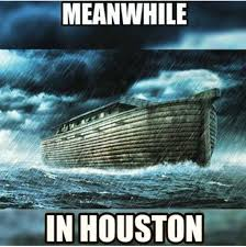 Storm Crow Meme - internet flood memes of may 2015 houston flooding houston chronicle