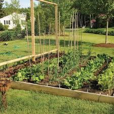 backyard vegetable garden design with regard to backyard vegetable