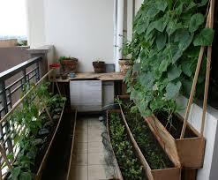 Patio Vegetable Garden Ideas Stylish Patio Vegetable Garden Outdoor Furniture Plant Easy To
