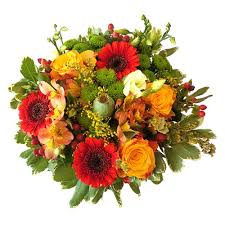 combination of colors beautiful puget full of colors with a touch of autumn the
