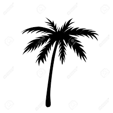 one palm tree outline black coconut tree silhouette isolated