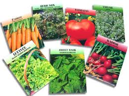 seed packets vegetable seed packets halflifetr info
