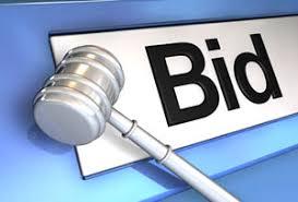 bid auction websites business idea auction site