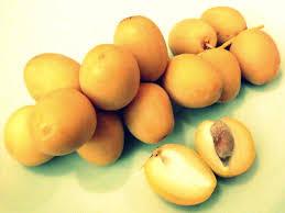 fresh dates fruit khalal dates the call of the honeyguide