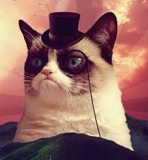 Meme Generator Grumpy Cat - grumpy cat top hat blank meme template imgflip