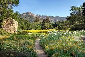 Botanic Garden Santa Barbara Santa Barbara Botanic Garden Atta Associates Santa Barbara