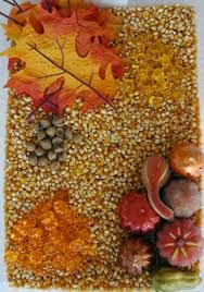 210 best fall autumn sensory activities images on