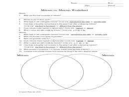 life in first grade compare and contrast venn diagram lesson plan