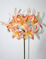 70cm Vase Artificial Flowers Silk Apricot Nerine Flower Stem 70cm Vase