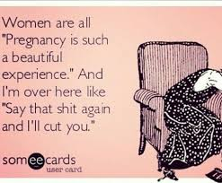 Being Pregnant Meme - pregnancy month 1 2 3 the good the bad and the ugly she