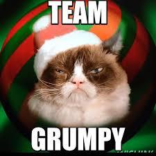 Cat Christmas Memes - team grumpy cat christmas edition grumpy cat know your meme