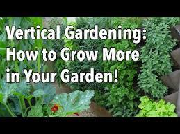 vertical gardening simple ideas for a balcony garden upcycle u0026 co