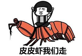 Meme In Chinese - commentary let s go mantis shrimp younger generation chinese