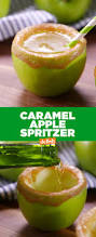 green apple martini best green apple spritzer recipe how to make a green apple spritzer