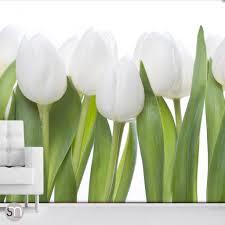 white tulips nature wall mural graphicsmesh white tulips nature wall mural