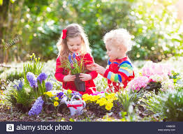 children planting spring flowers in sunny garden little boy and