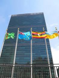 siege des nations unis drapeaux internationaux dans l avant du siège des nations unies à