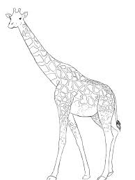 giraffe coloring book az coloring pages clip art library