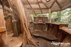 The 8 Best Tree House Hotels in Costa Rica  Oystercom