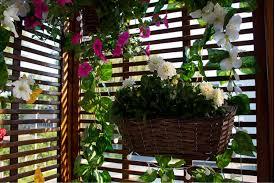pergola balkon taras a może ogródek które rozwiązanie wybrać