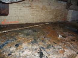 Sewer Backup In Basement Cleanup Diy Basement Flooded Ideas U2014 New Basement And Tile Ideas