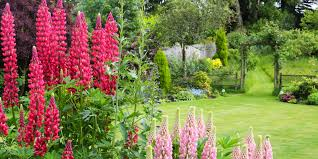 4 garden designs and layouts photo ideas to suit your lifestyle