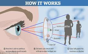 What Structure Of The Eye Focuses Light On The Retina Auto Focus Contact Lenses That Help You See In The Dark Thanks To