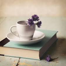 Flowers In A Book - the 25 best still life flowers ideas on pinterest still life