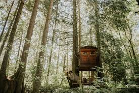 Treehouse Point Wa - jordanquinn photography cristina u0026 steven treehouse point