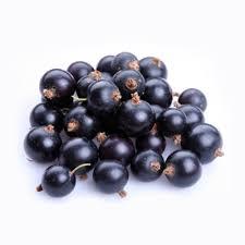 fresh frozen organic black currants