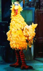 big bird muppet wiki fandom powered wikia