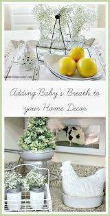 Home Decor And More Winterizing With Baby S Breath One More Time Events
